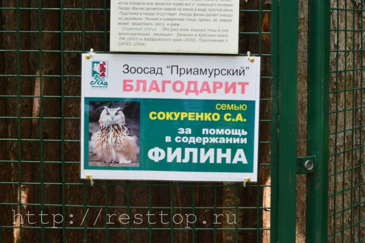 зоосад на воронеже хабаровск resttop.ru 25
