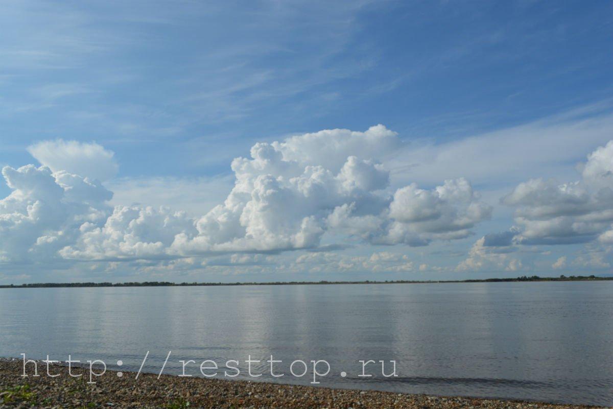 зоосад на воронеже хабаровск resttop.ru 51