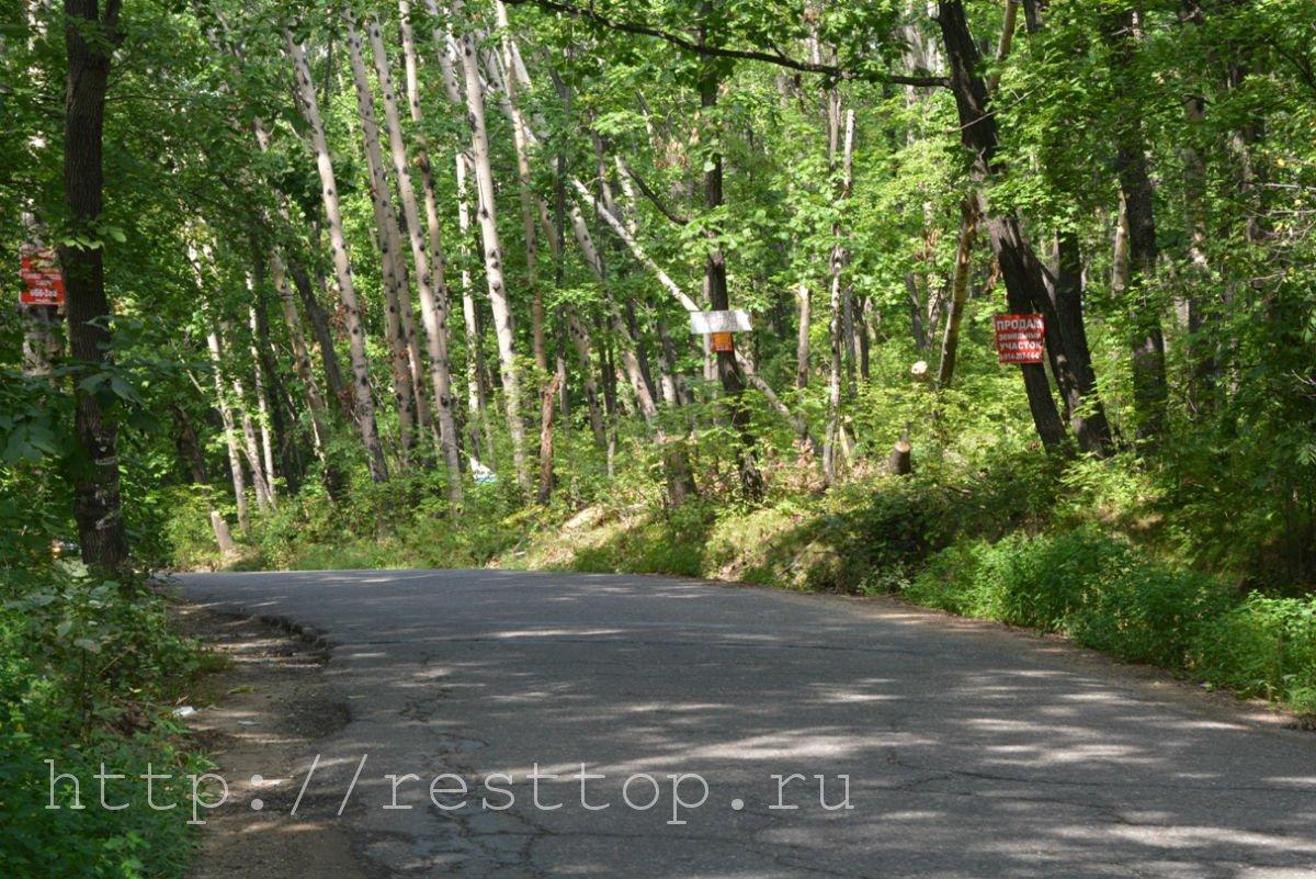 зоосад на воронеже хабаровск resttop.ru 6