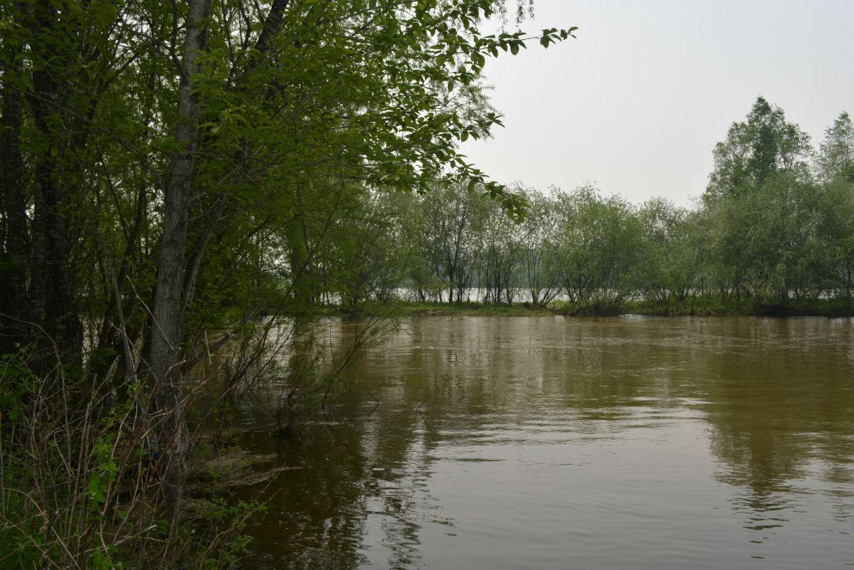 рыбалка в мае-18