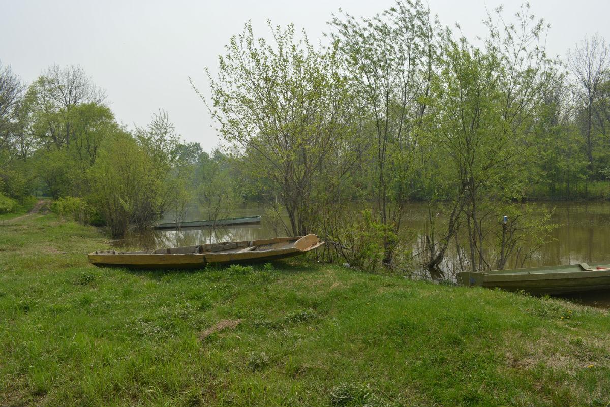 рыбалка в мае-20