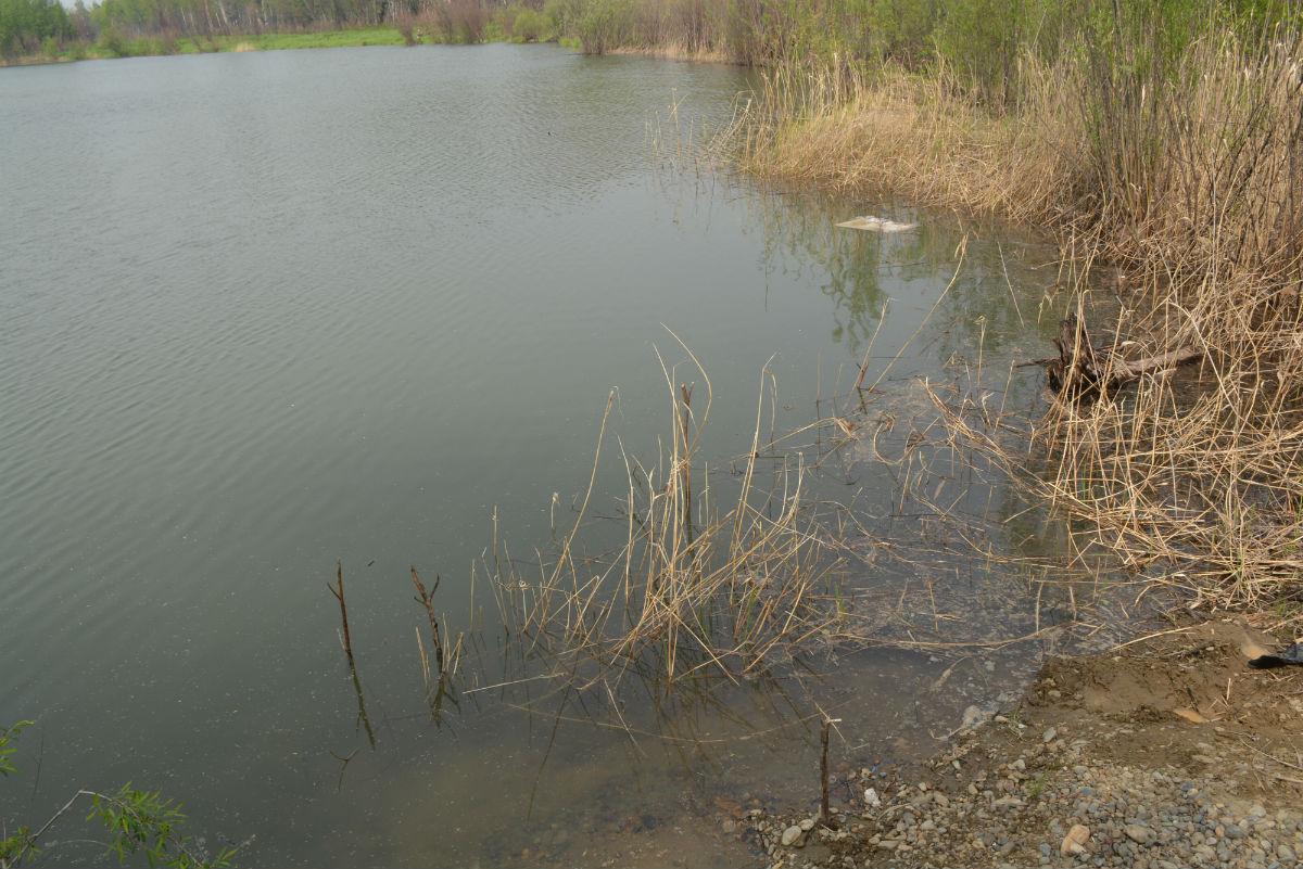 рыбалка в мае хор-23