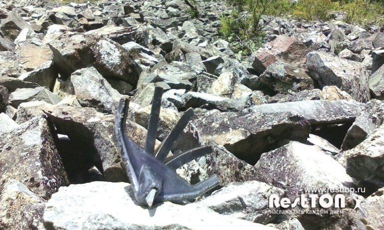 лапка с наконечником озеро Амут