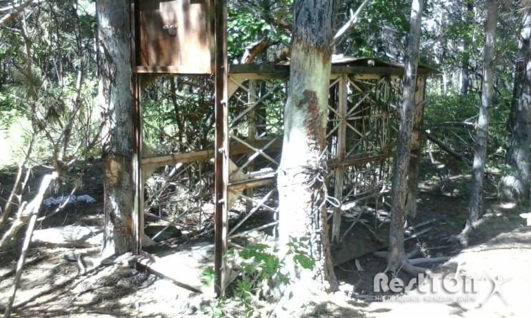 клетка-ловушка на медведя Комсомольский район