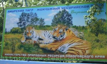 Зоосад имени Сысоева в Хабаровске: карта, как добраться, цена